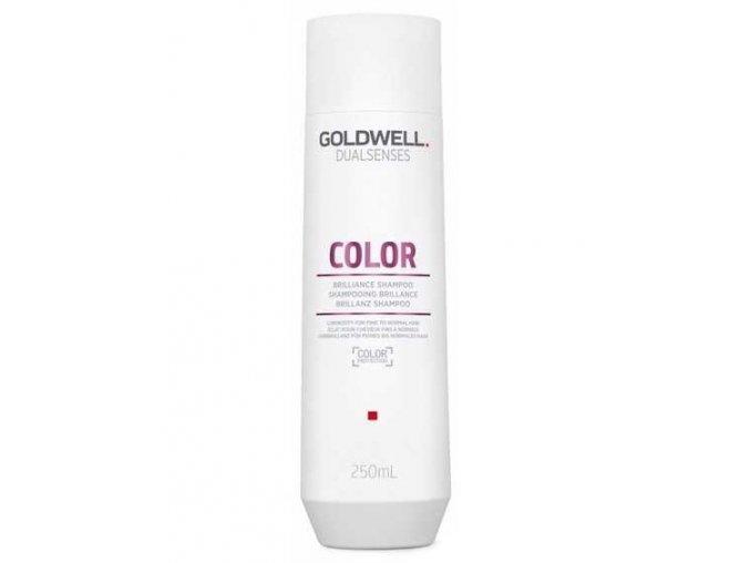 GOLDWELL Dualsenses Color Shampoo 250ml - šampon pro barvené a tónované vlasy