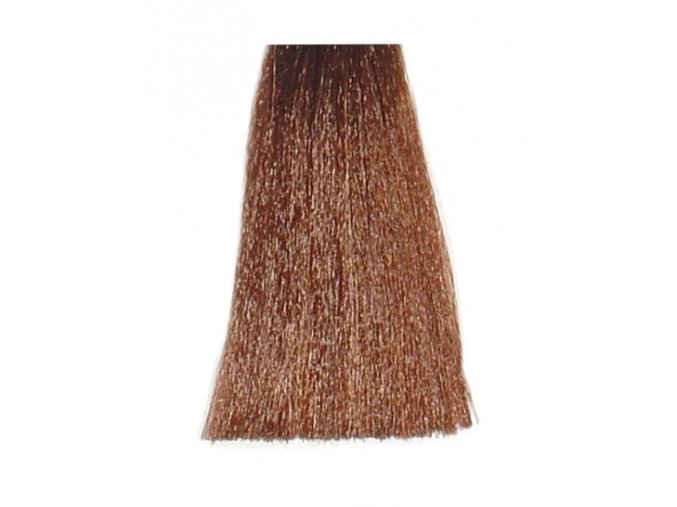 BES Hi-Fi Hair Color Krémová barva na vlasy - Světlá kaštanová zlatá 5-3