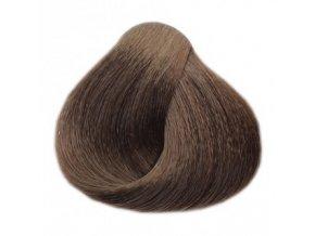 BLACK Sintesis Barva na vlasy 100ml - popelavě tmavý blond 6-1