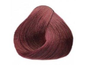 BLACK Sintesis Barva na vlasy 100ml - švestková 6-2