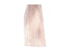 BES Hi-Fi Hair Color Krémová barva na vlasy Fashion - Agata F-19