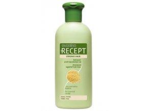 SUBRINA Recept Strong Hair - šampon proti vypadávání vlasů 400ml