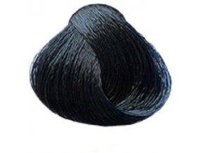SUBRINA Unique New Barva na vlasy 100ml - 2-2 modro černá