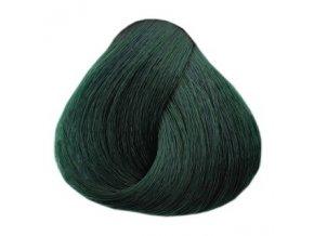 BLACK Glam Colors Permanentní barva na vlasy 100ml - Ivy Green C6
