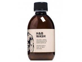 DEAR BEARD HB Wash 250ml - revitalizační vlasový a sprchový šampon