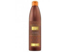 ARGAN Professional Repair Shampoo 500ml - šampon s arganovým olejem na poškozené vlasy