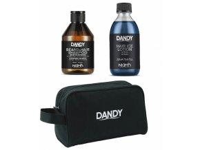 DANDY Gift Bag Shampoo 300ml + Hair Ice Lotion 250ml - dárkový balíček pro muže