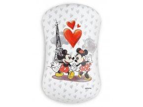 DESSATA Original Disney Minnie Mouse - Profesionální rozčesávací kartáč