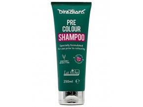 La Riché DIRECTIONS Pre Colour Shampoo 250ml - šampon před barvením vlasů