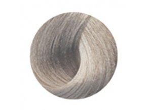 BLACK Sintesis T1 Platinum Ash - Tónovací barva na vlasy 100ml