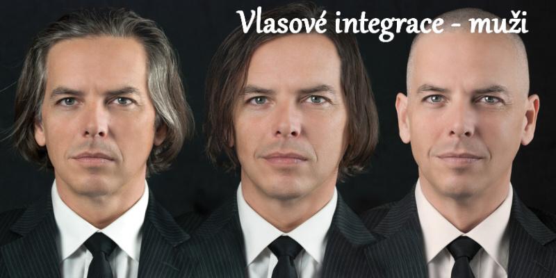 Vlasové integrace