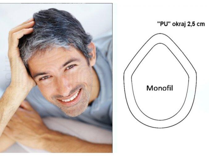 Vlasovy system pansky prosedively