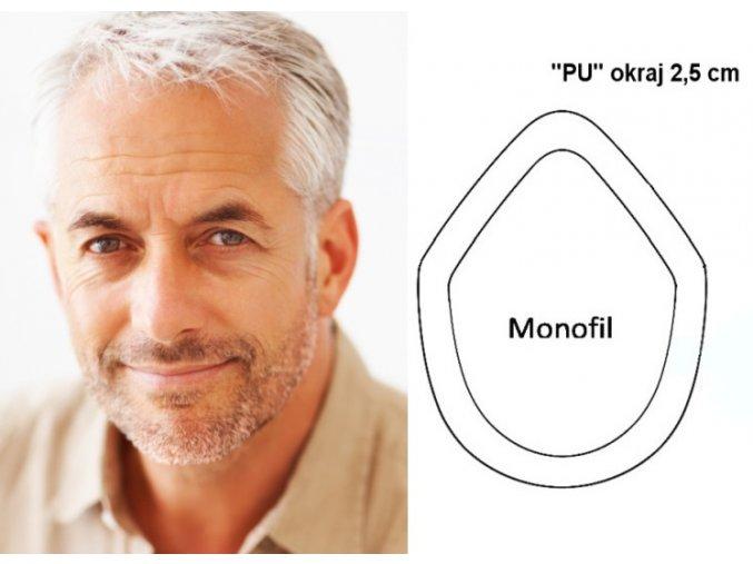 Vlasovy system model J
