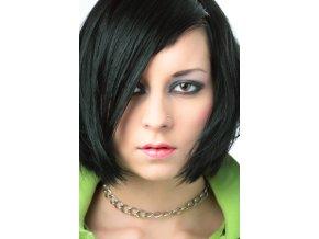 Integrace vlasů střih (10)