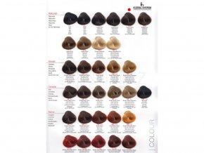 barva-na-vlasy-kleral-5