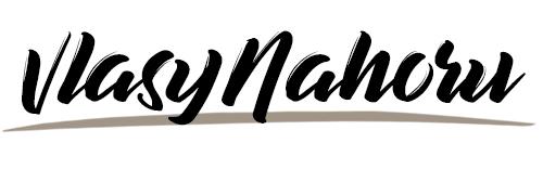 vlasynahoru-logo8