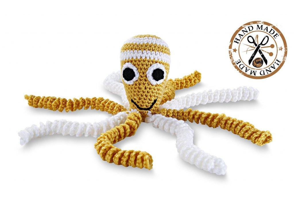 hackovana chobotnicka zluta (2)
