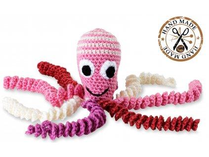 chobotnicka hackovana, ruzova hlavicka