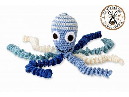 chobotnicka hackovana, modra hlavička