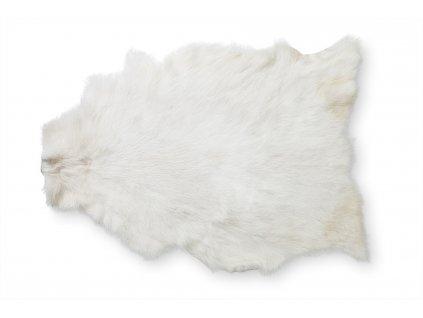 Dekorativní kůže koza, bílá