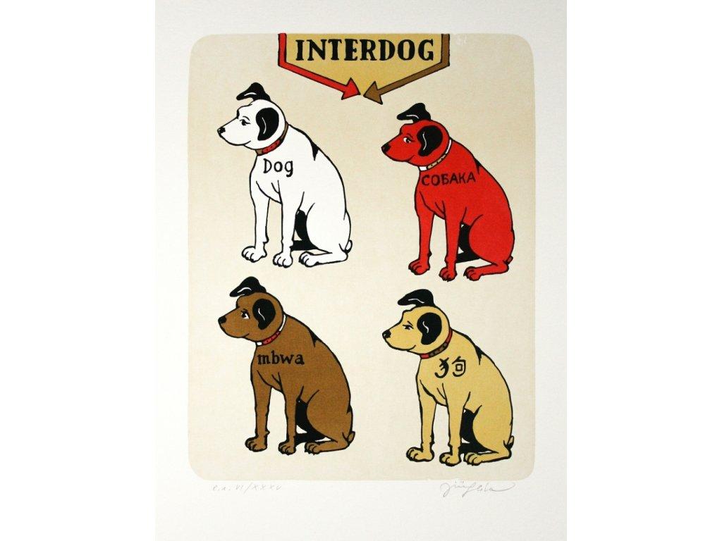 0948 0001 17 sliva interdog web