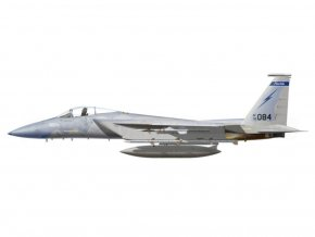 Witty - McDonnell Douglas F-15A Eagle, USAF, Air National Guard, 1/72
