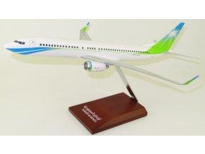 Lupa - Boeing 737-800, dopravce Saudi Aramco, Saudská Arábie, 1/100