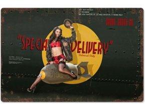 "Plechová cedule ""Special Delivery"", 45 x 30 cm"