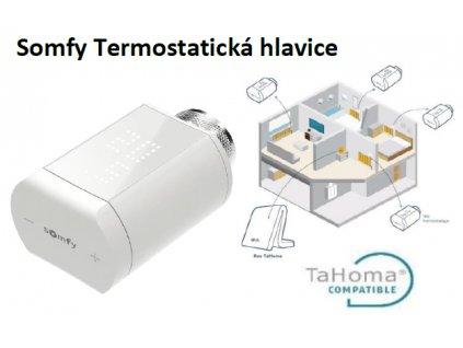 Termostatická hlavice