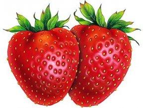 Ovocný gel jahoda 1 kg