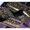 Čokotransfer folie - Hvězdičky