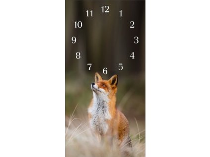 Nástěnné hodiny liška II. 30x60