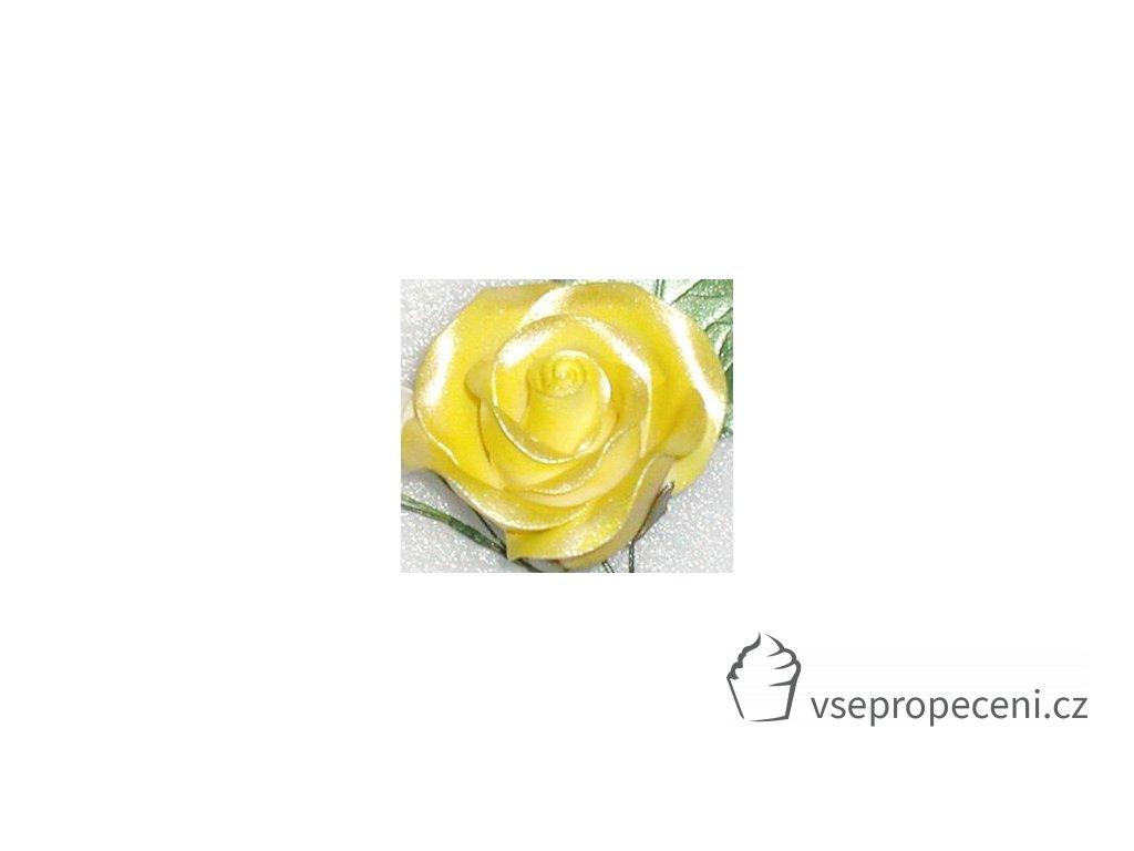 americolor amerimist edible paint and airbrush colour yellow sheen 65 oz 3119755