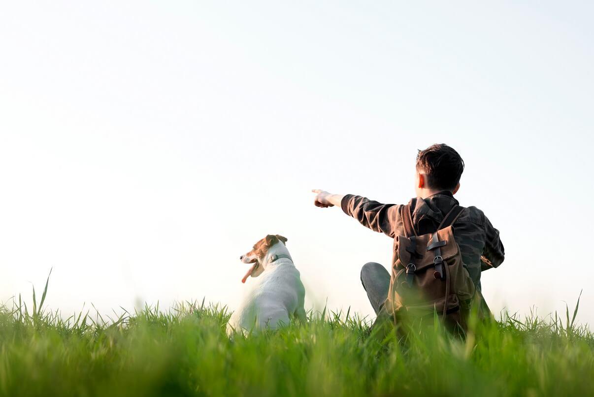Kam na výlet se psem v Plzeňském kraji?