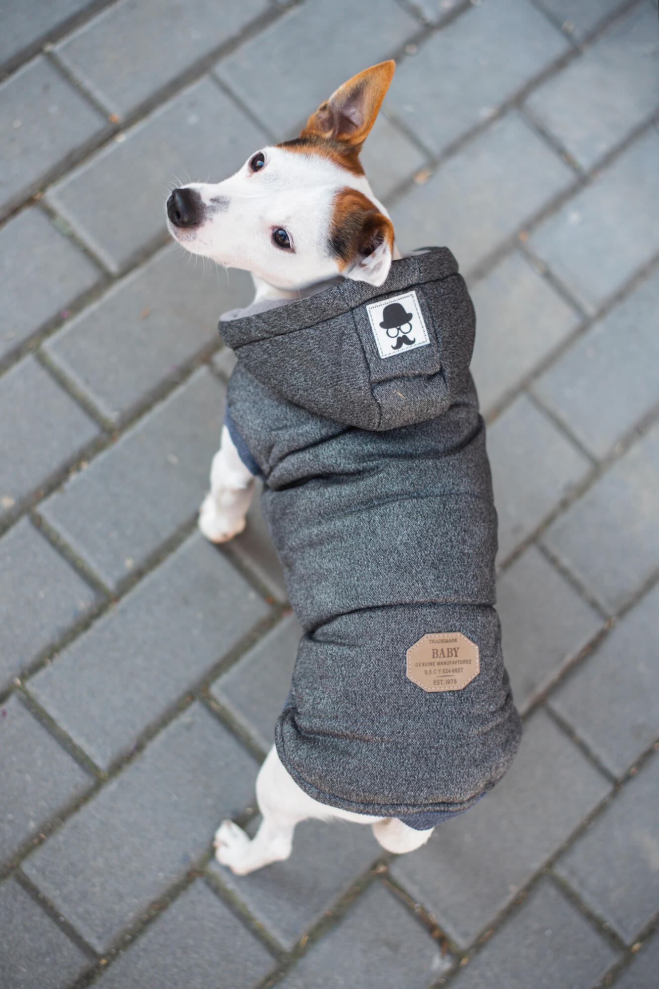 Mix zimní bunda pro psa - vsepropejska.cz