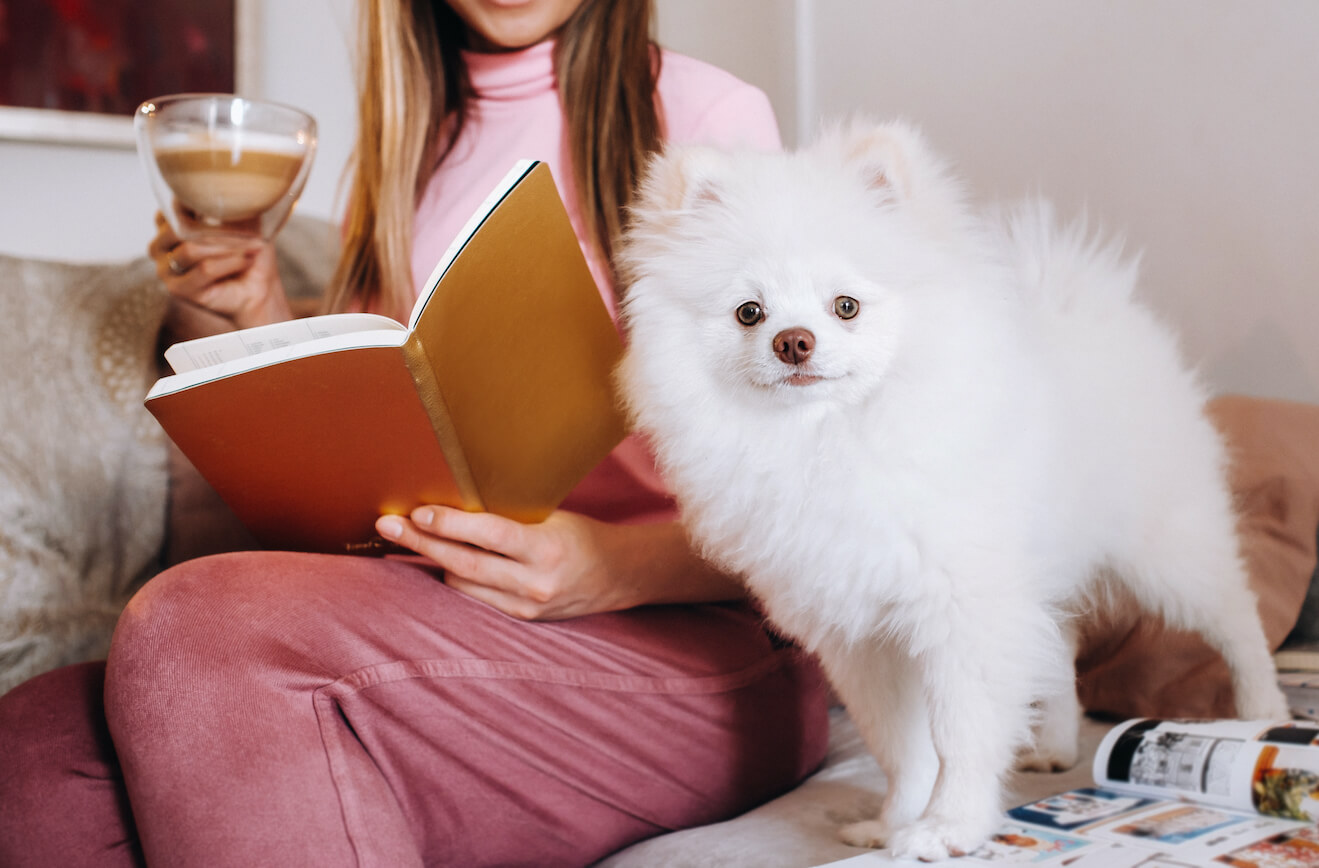 a-girl-in-pajamas-at-home-reads-a-book-with-her-do-Z5GAXGR