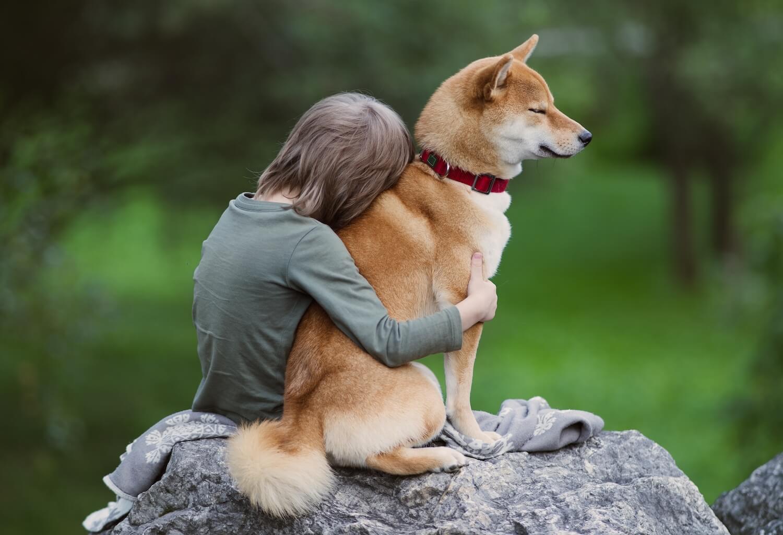 cute-boy-hugs-his-furry-friend-shiba-inu-dog-on-a--K5CQSSU