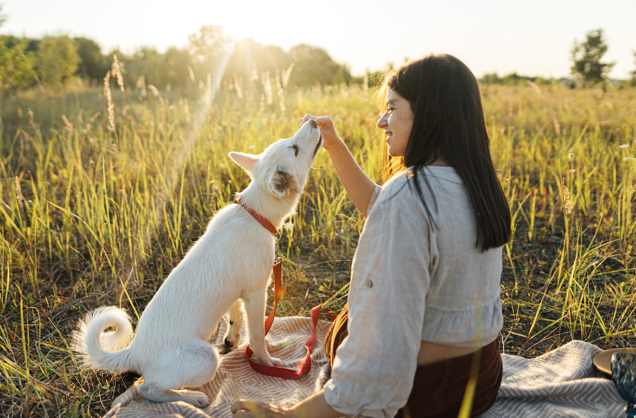 stylish-woman-giving-treats-to-her-white-dog-on-bl-RRB4FX5-2
