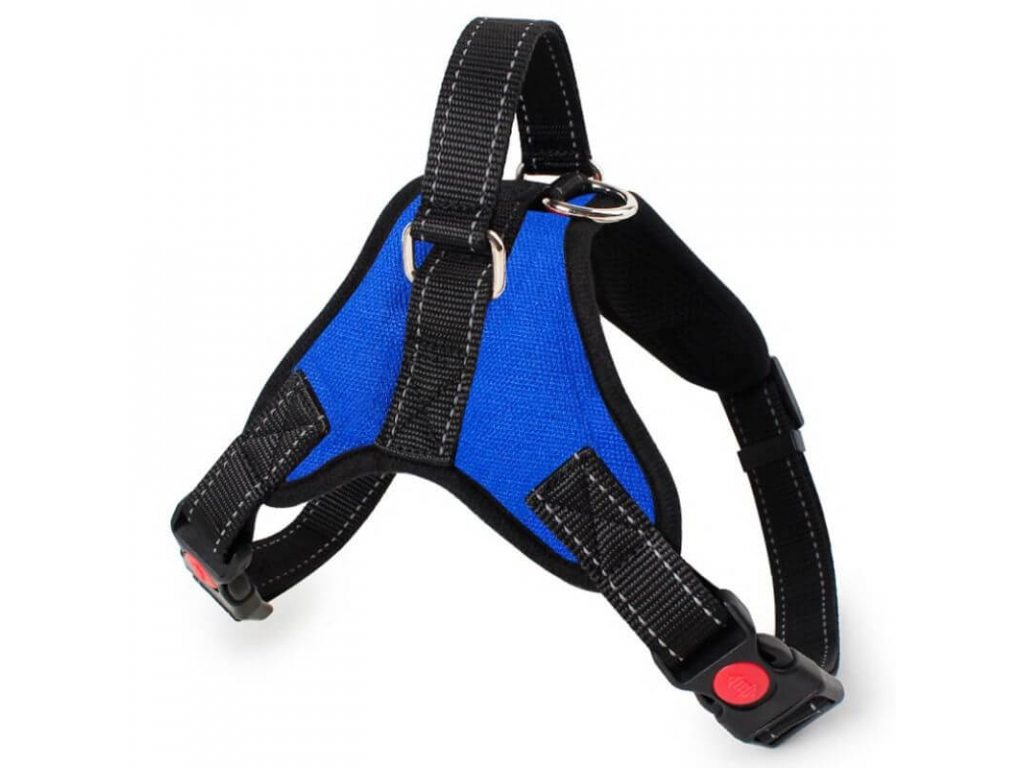 Sporty modrý postroj pro psa   45 – 91 cm