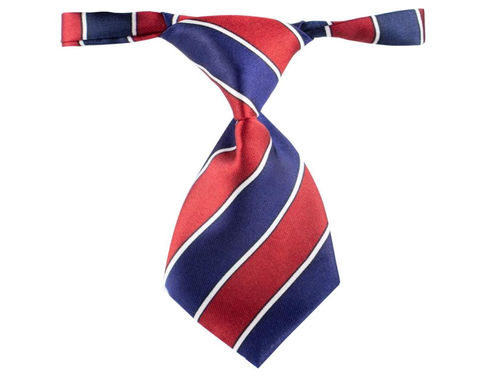 Modro-červená kravata pro psa s proužky - kravaty pro psy - vsepropejska.cz