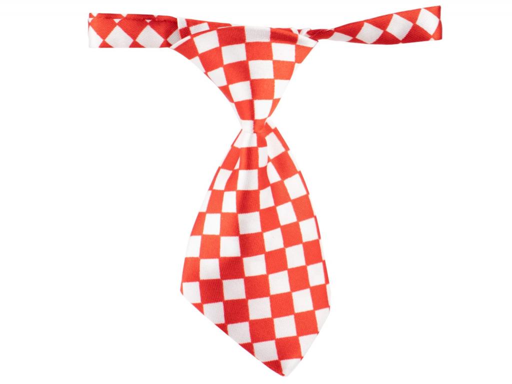 Červeno-bílá kostkovaná kravata pro psa - kravaty pro psy - vsepropejska.cz