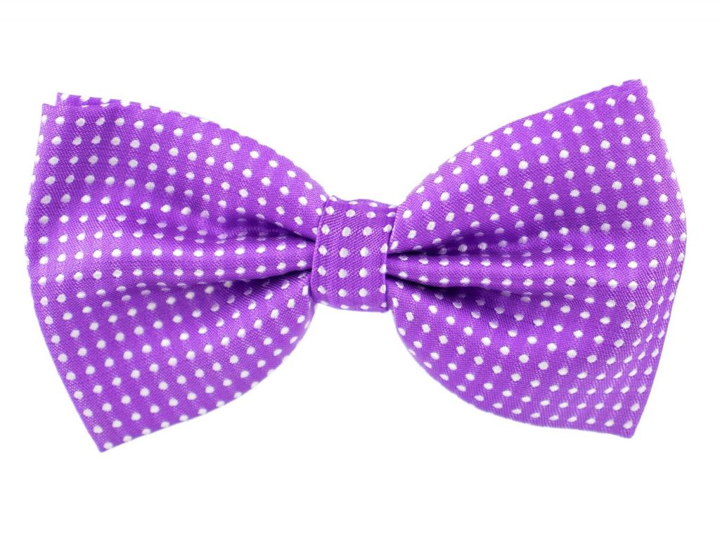 Elegant fialový motýlek pro psa s puntíky - vsepropejska.cz