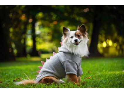 Dino mikina pro psa s kapucí - obleček pro psa - vseporpejska.cz