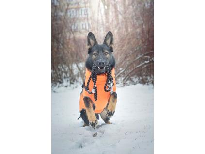 Climb přepínací vodítko pro psa | 250 cm