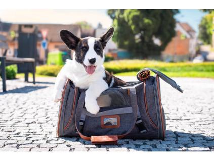 Gipsy šedá taška pro psa