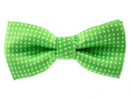 Elegant zelený motýlek pro psa s puntíky - vsepropejska.cz