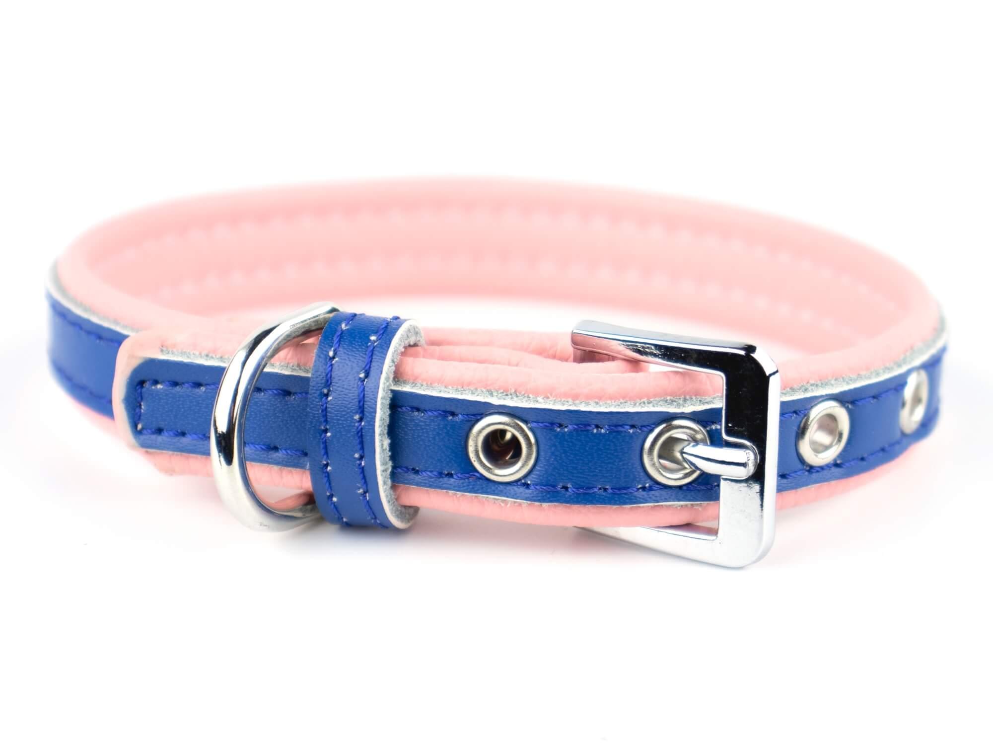 Vsepropejska Rose obojek pro psa | 22 - 34 cm Barva: Modro-růžová, Obvod krku: 21 - 27 cm