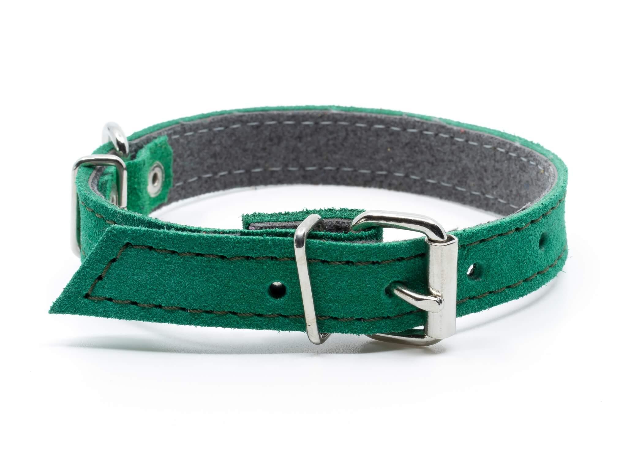 Palkar Velur kožený obojek pro psa | 13 – 48 cm Barva: Zelená, Obvod krku: 23 - 29 cm