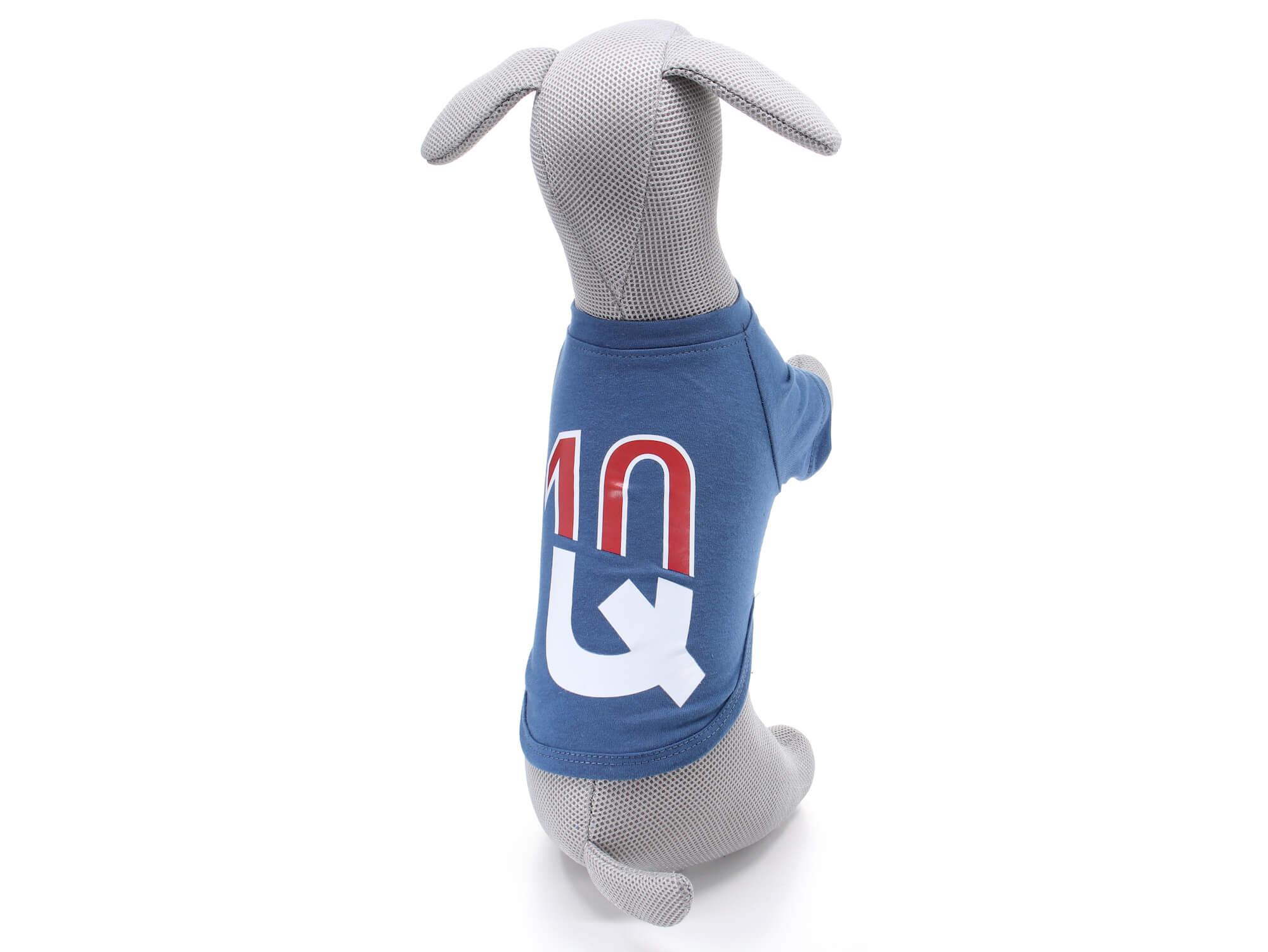 Levně Vsepropejska Charles tričko s nápisem pro psa Barva: Modrá, Délka zad psa: 25 cm, Obvod hrudníku: 34 - 36 cm