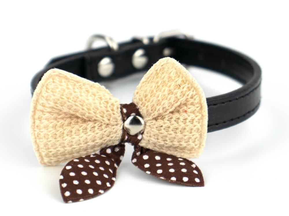 Levně Vsepropejska Fashion obojek s motýlkem | 18 - 36 cm Barva: Černá, Obvod krku: 24 - 29 cm